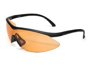 Glasögon EDGE fast Link black Tiger's eye lens
